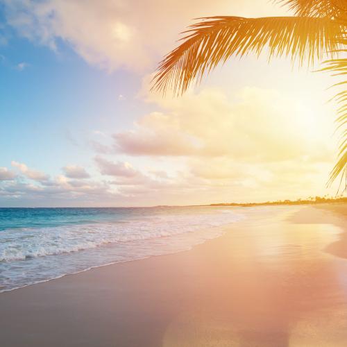 Cancún: Paraíso escondido ¡conócelo!